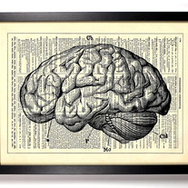 Image of Anatomy Brain, Human Anatomy, Vintage Dictionary, 8 x 10