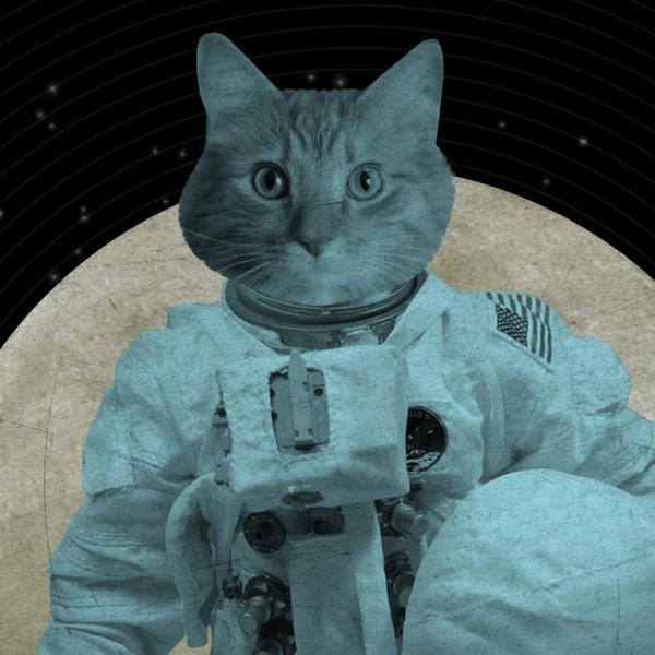 LuciusArt | Astronaut Cat 8x10 Print | Online Store ...