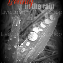 Find the beauty in the rain 8x10 print