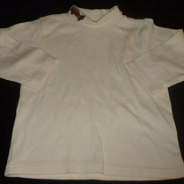 Creme Turtleneck with Firetruck-Gymboree Size 2T