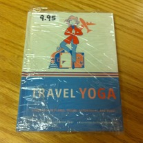 Travel Yoga by Darrin Zeer