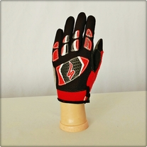 Black and Red Bike Gloves