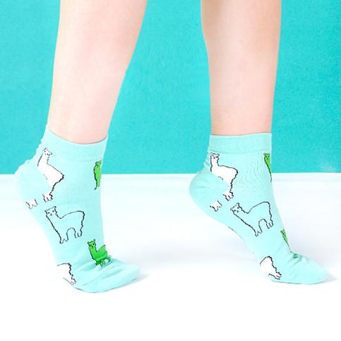 Alpacas Llama Animal Graphic Print Cotton Short Ankle ...