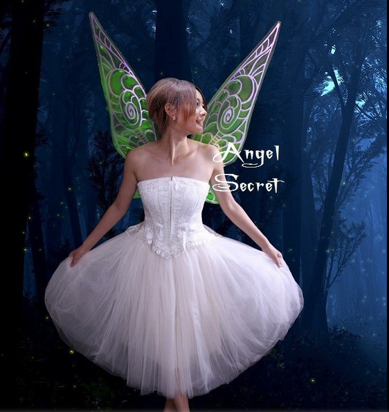 WN1 [adult] Tinkerbell Fairy fancy Adults Costume Wings photo ...