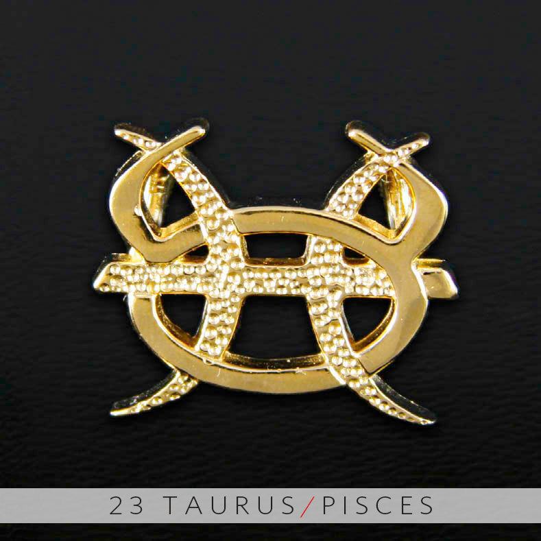 Unity design concepts 23 taurus and pisces gold unity pendant 23 taurus and pisces gold unity pendant mozeypictures Choice Image