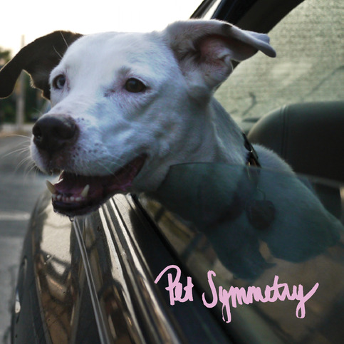 "PET SYMMETRY ""Two Songs About Cars..."" 7"""