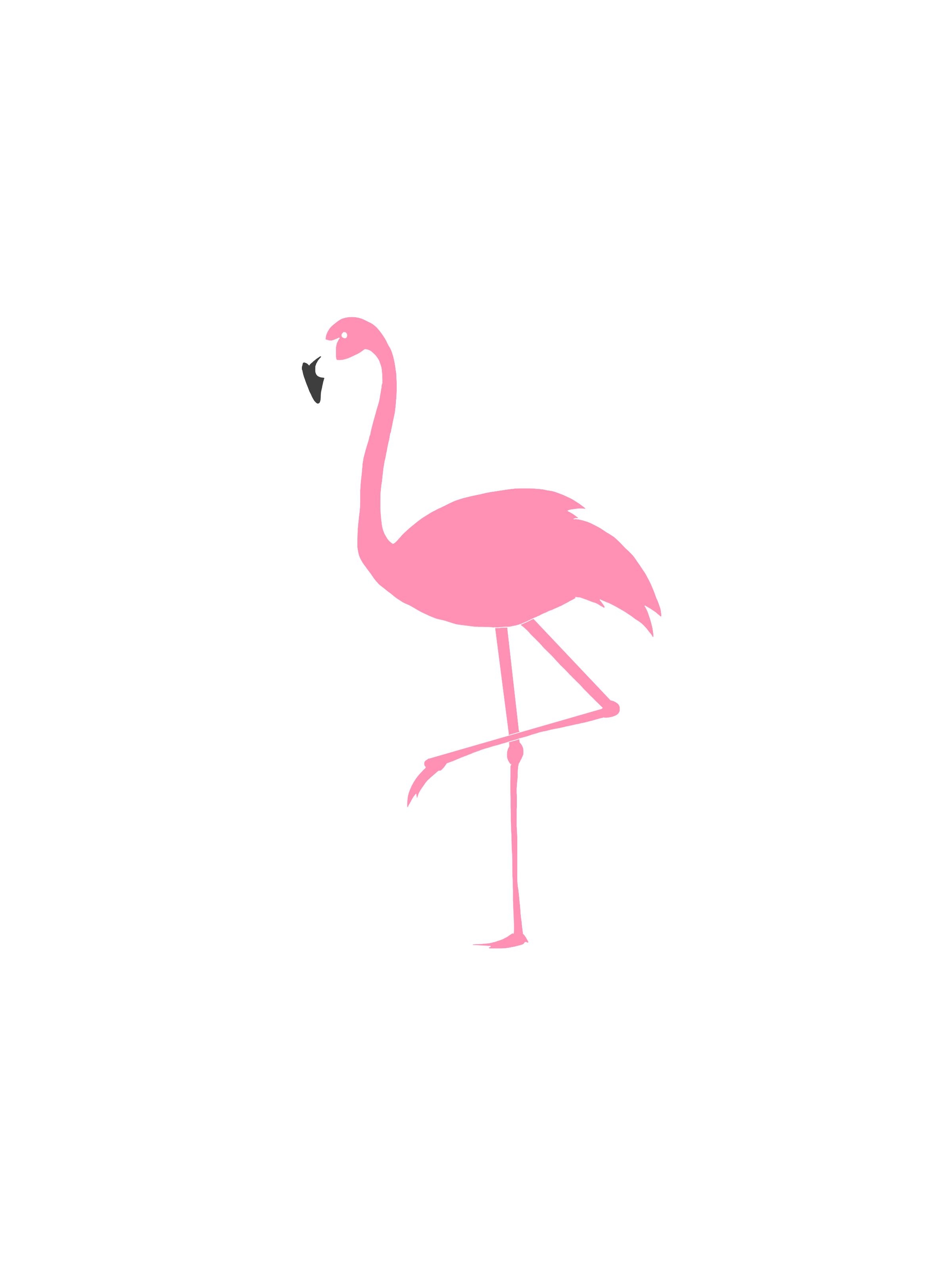 Flamingo Logo On Storenvy