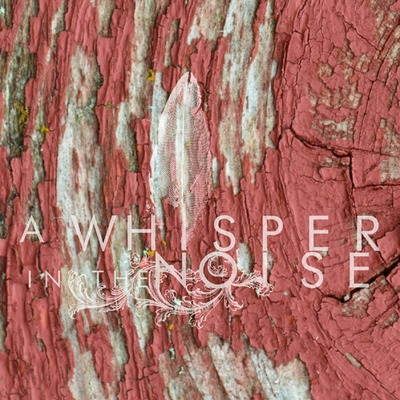 A whisper in the noise to forget [cd]