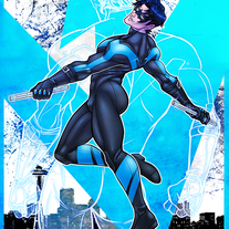 Nightwing 8.5 x 11 Print medium photo