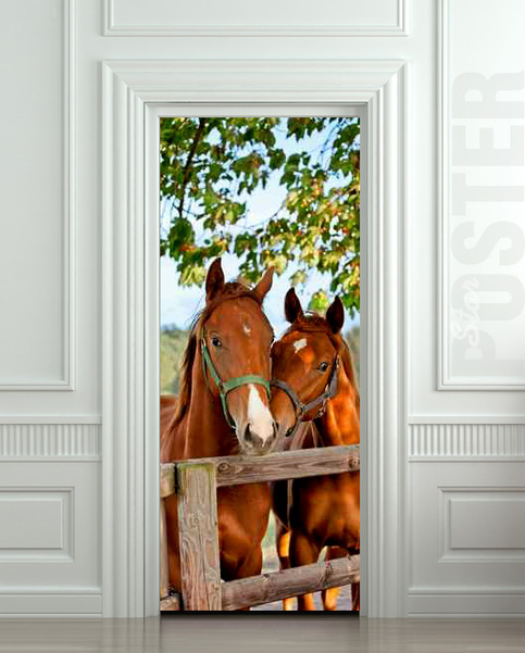 Wall door sticker horse mare mustang hoof ride mural for Mural film