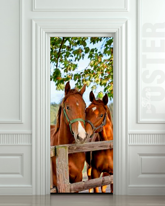 Wall door sticker horse mare mustang hoof ride mural for Door mural stickers