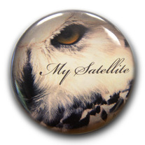 Owl_20eye_20pin_20copy_20sm_medium