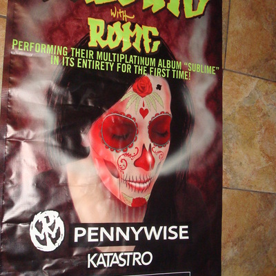 Sublime with rome, pennywise 8/2/13 vinyl banner@ marquee theatre