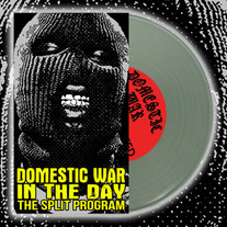 Domestic War / In The Day Split 7""