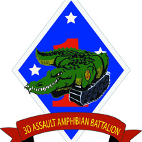 3RD Assault Amphibian Battalion
