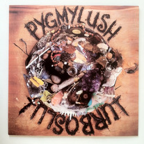 Pygmy Lush / Turboslut split LP