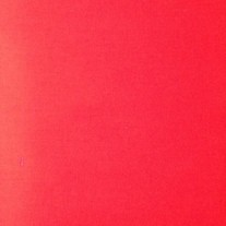 Red Accent Fabric