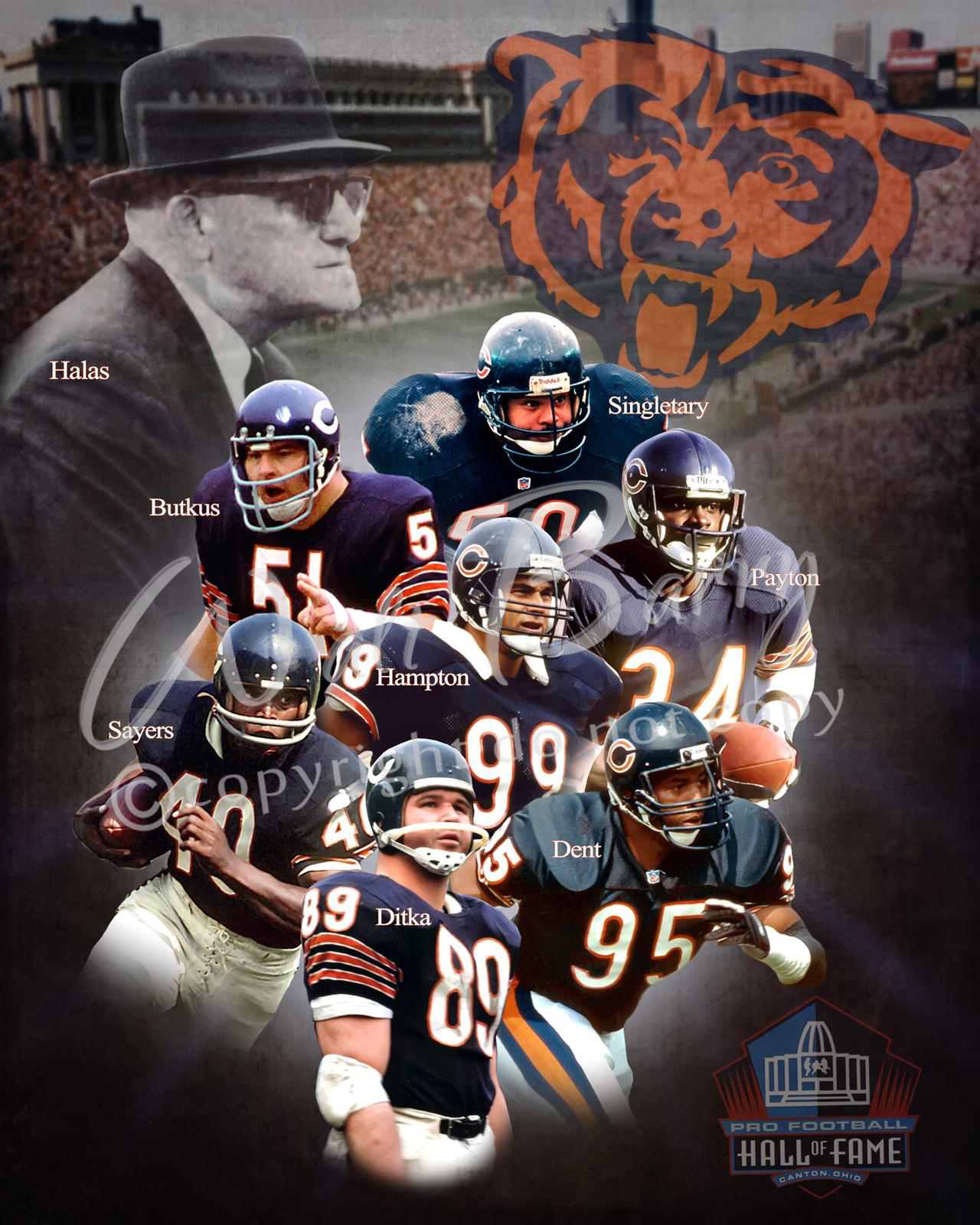 size 40 48682 7ab2f Chicago Bears H.O.F.-Collage from waltbarry.com