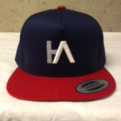 baseball cap the wings tour