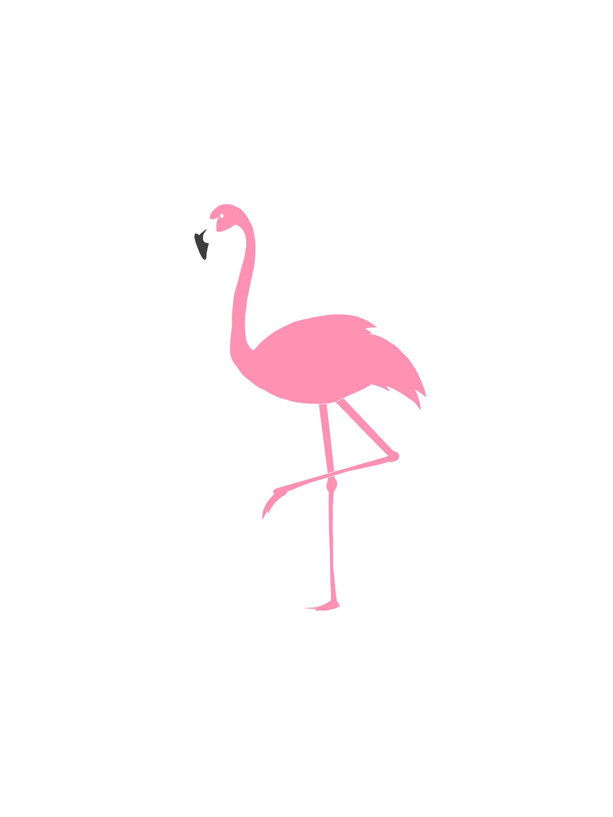 Flamingo Logo On Storenvy