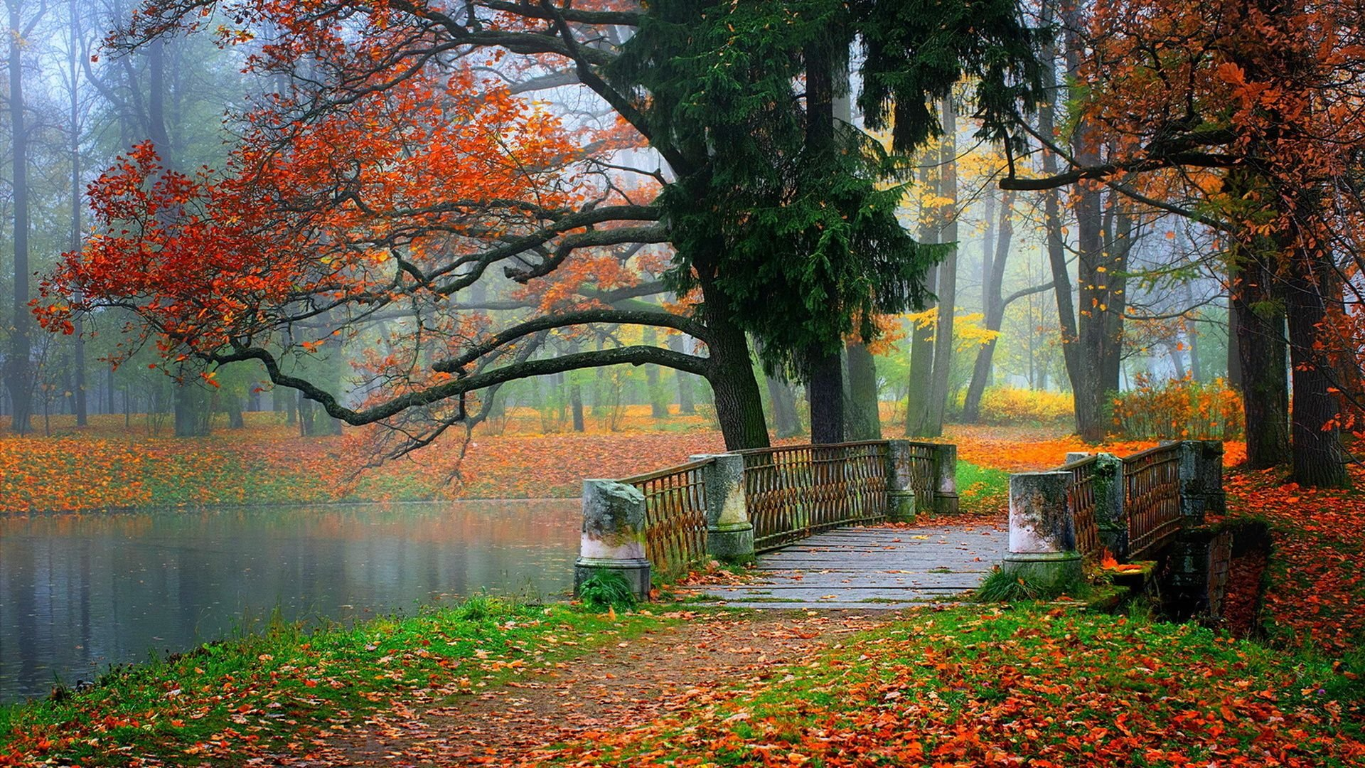 nature fall bridge colorful amazing natural gorgeous peace perfect dream poster 5x11 4x6