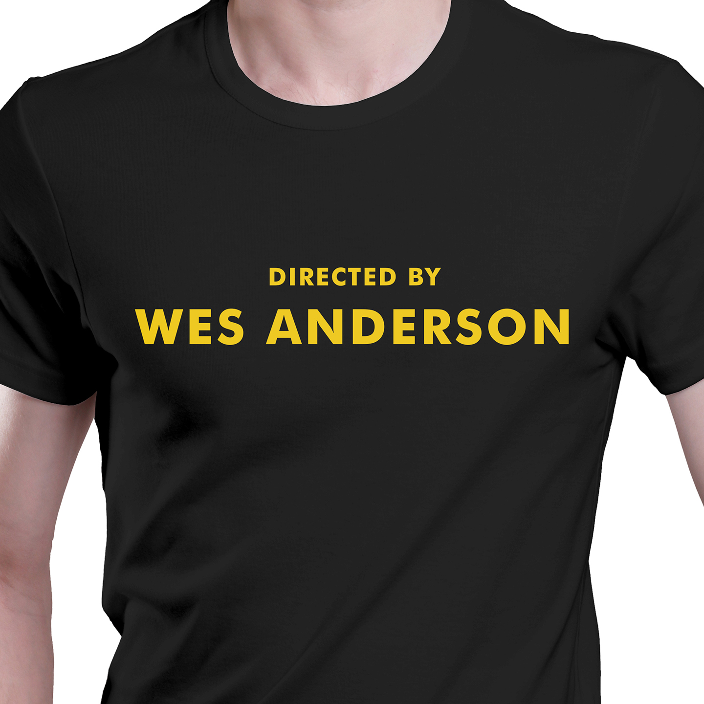 2fc347b5c Directed by Wes Anderson T-shirt on Storenvy