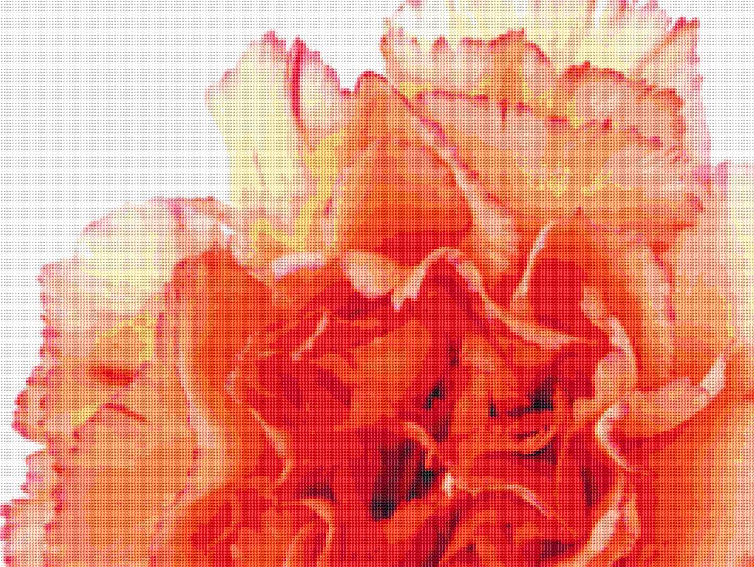 Orange Carnations Cross Stitch Pattern