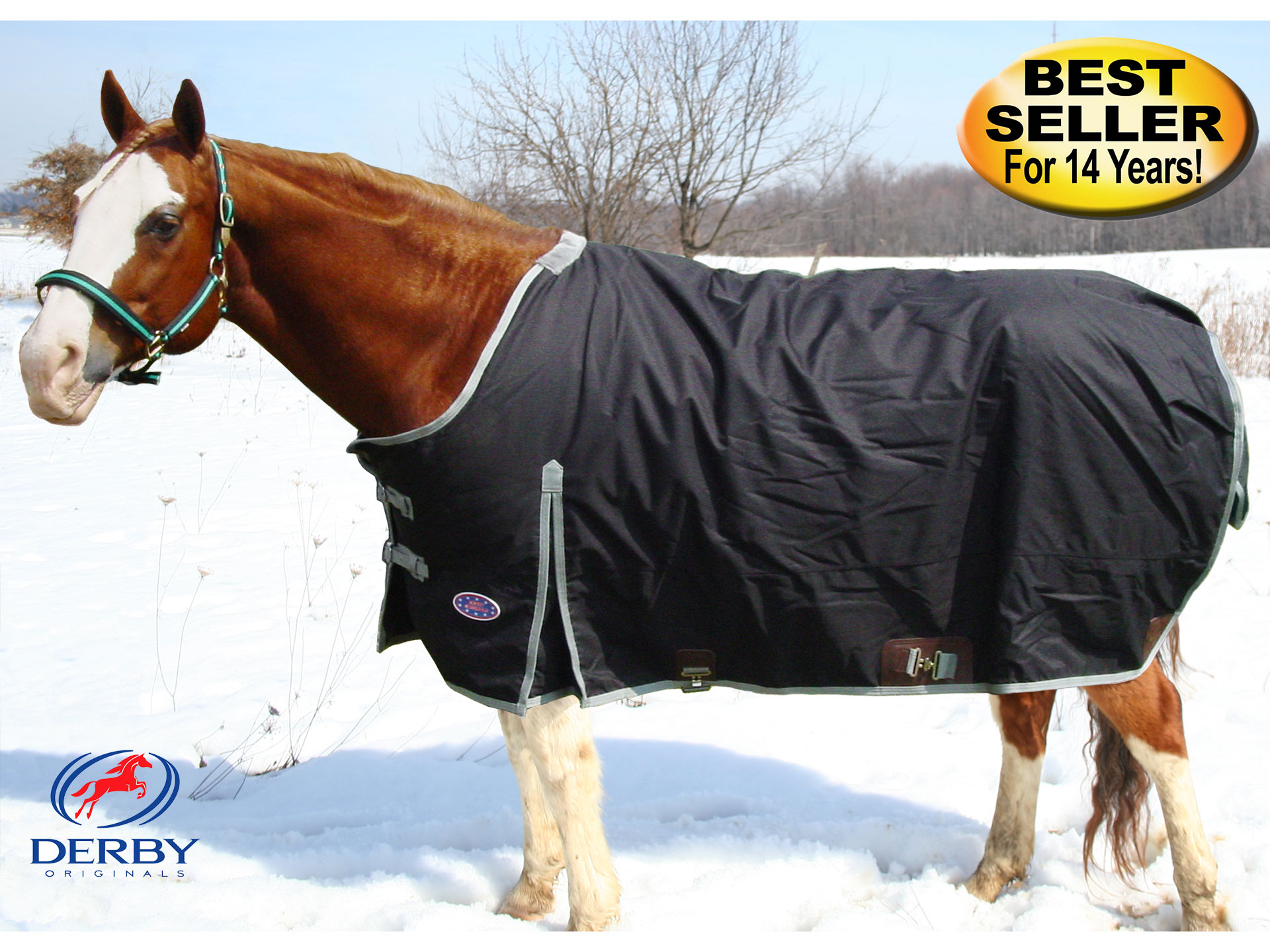 Winter Horse Blankets >> Nylon Winter Turnout Horse Blankets 600d In Black