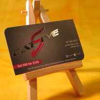 Cat5ive 16pt silk spot uv business cards 500qty online store 16pt silk spot uv business cards 500qty colourmoves